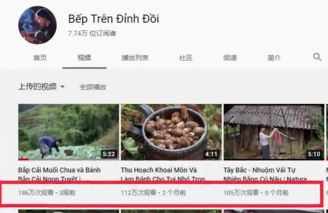 【东施效颦】越南博主抄袭李子柒是怎么回事?终于真相了,原来是这样!